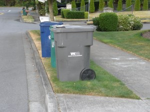 Three bins : grey (yard waste), green (garbage), blue (recycle) in a line ready to be picked up