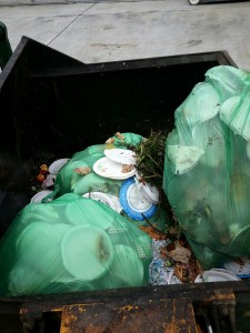 Yard Waste pile with lots of paper plates