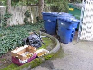Garbage and bulky items left next to recycle carts
