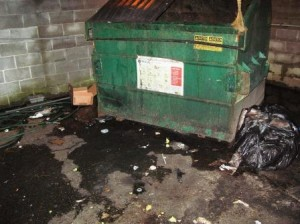 Garbage dumpster surrounded by liter, very dirty.