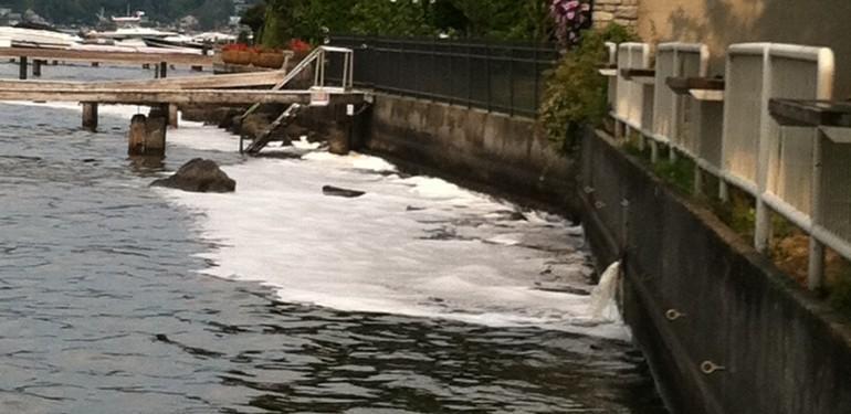 soap suds washing into Lake Washington