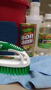 green cleaning kit closeup - small