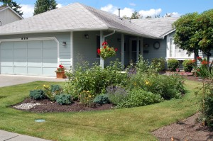 lawn and natural landscape by home