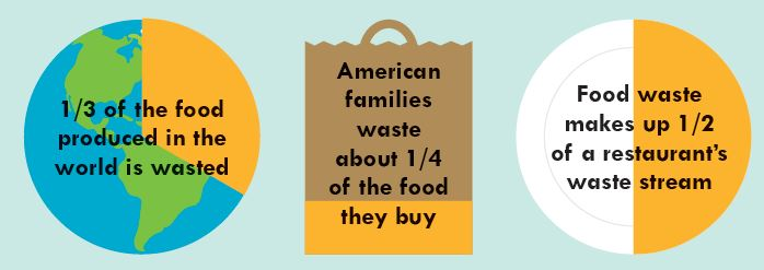 wasted food infographic
